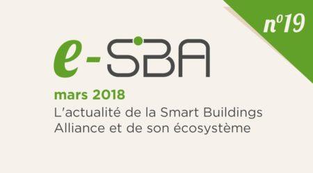 E-SBA N°19
