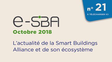 E-SBA N°21