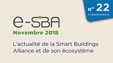 E-SBA N°22