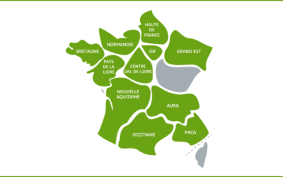 Zoom sur l'écosystème régional de la SBA